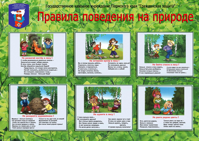 правила поведения в лесу для дошкольников картинки